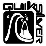 c086bcb303fc www.LOGOTHEQUE.fr - logo Quiksilver(93)